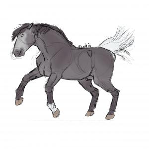 Cheval ibérique gris cabrant, sketch par Scotis