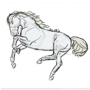 Cheval gris sautant en l'air, sketch par Scotis