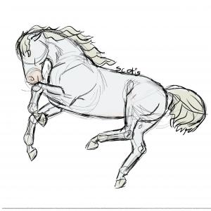 Cheval gris sautant en l'air, sketch par Scotis