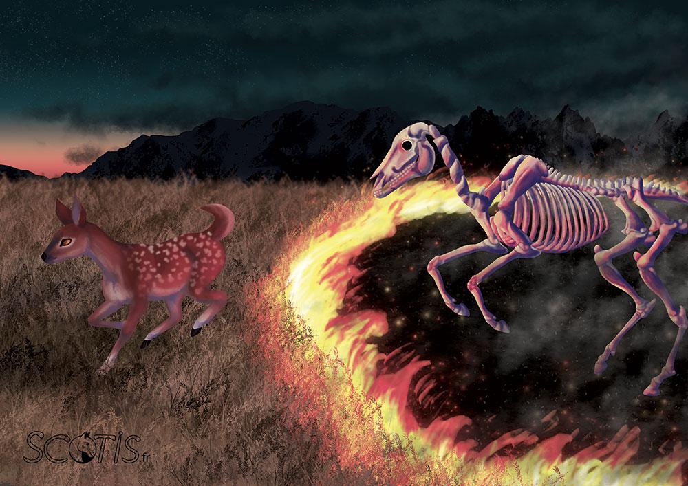 Dernière récolte - Illustration par Scotis (Charlotte Leclère)