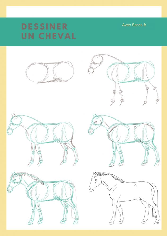 Pas à pas pour dessiner un cheval
