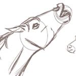 Dessiner la tête d'un cheval