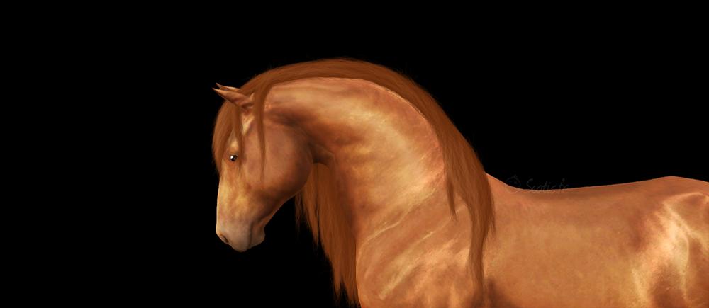 Screenshots retouchées d'un cheval Sims3